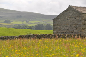 Dales Barn and Meadow
