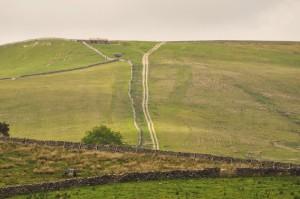 wensleydale lane