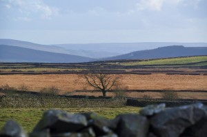 Yorkshire Dales in Autumn