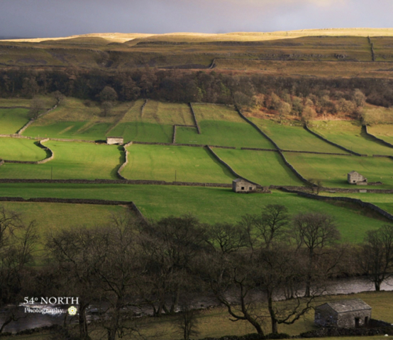 Autumn in Wharfedale, Yorkshire